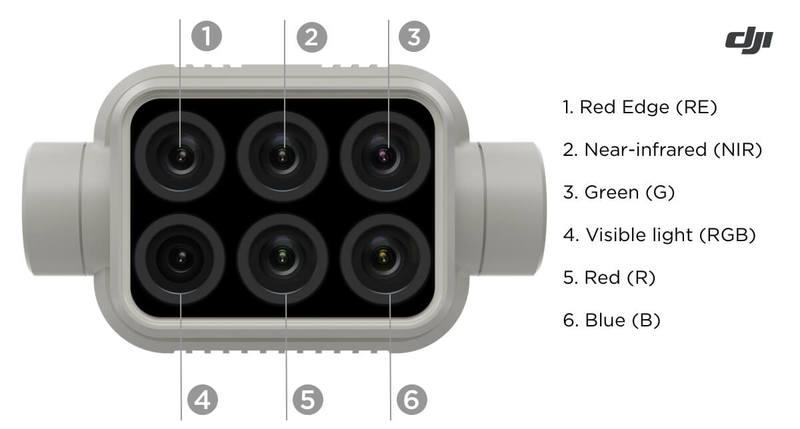 Integrated camera array